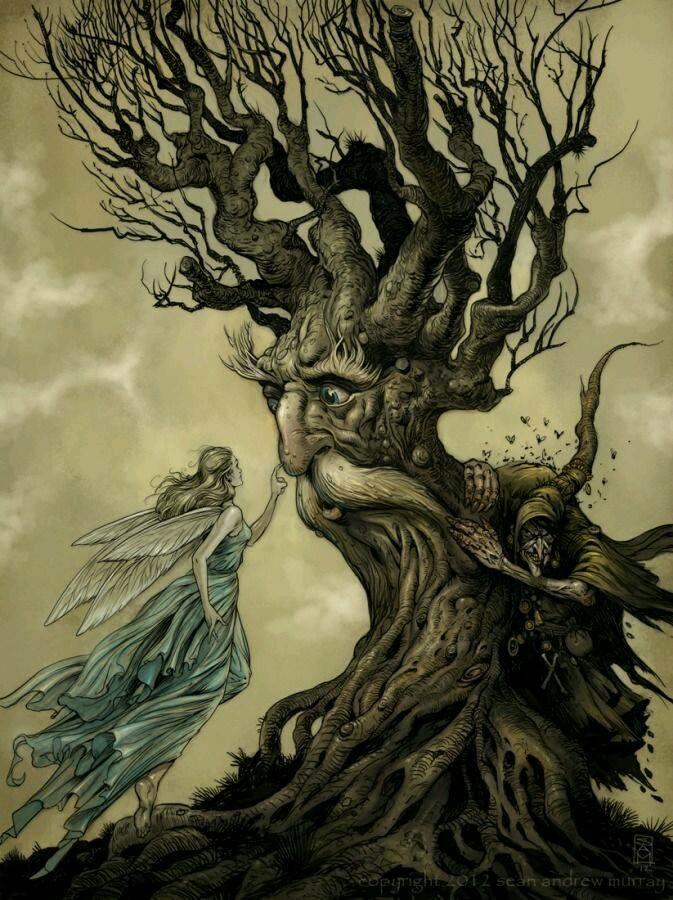 SEE THE TREE.JPG