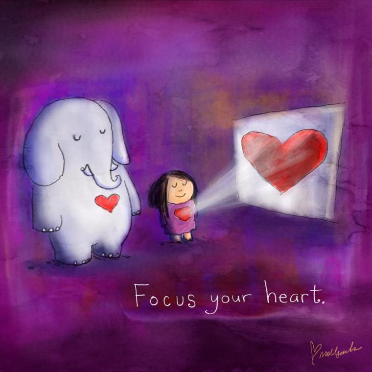BD FOCUS YOUR HEART.jpg