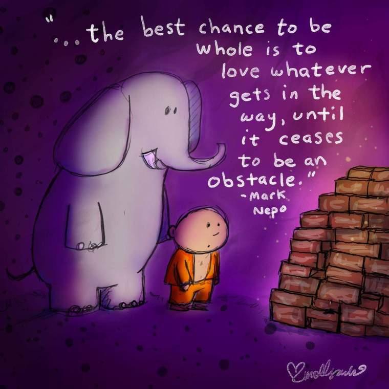 THE BEST CHANCE.JPG