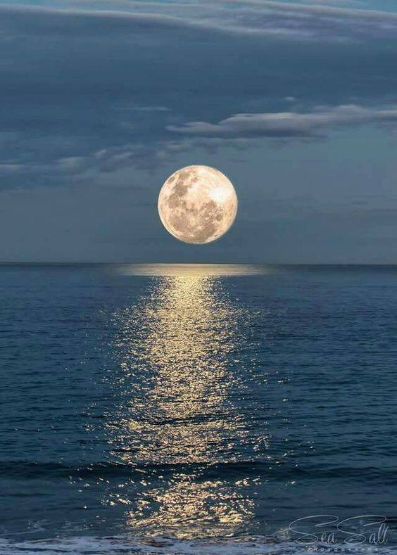 MOONLIT SEA.jpg