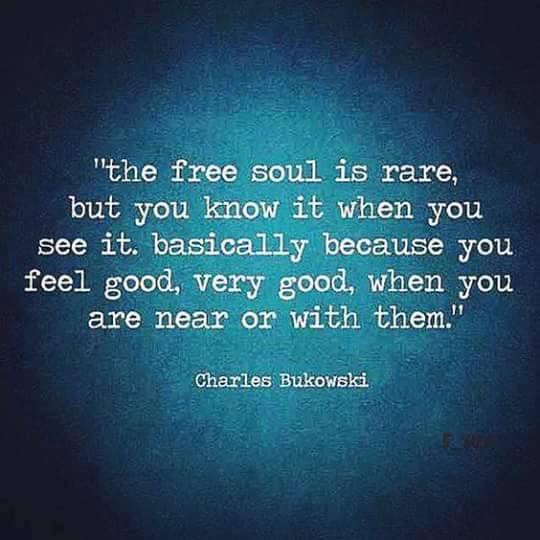 free soul is rare.JPG