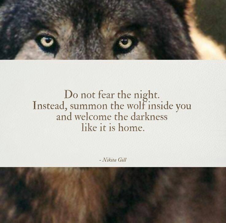DO NOT FEAR THE NIGHT.JPG