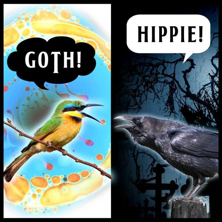 GothHippie.jpg