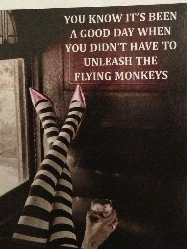 No flying monkeys.jpg