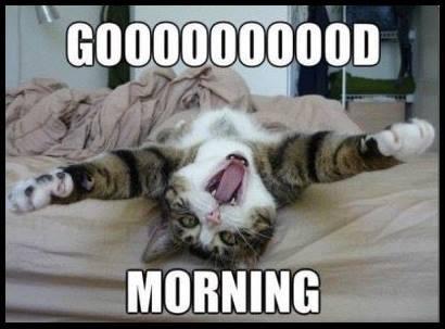 GOOD MORNING.JPG