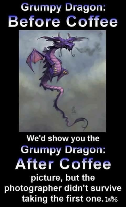 GRUMPY DRAGON.JPG