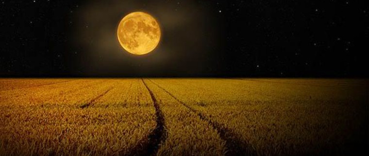halloween-full-moon-photos-part2-3-2.jpg