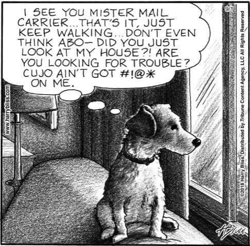 MISTER MAIL CARRIER