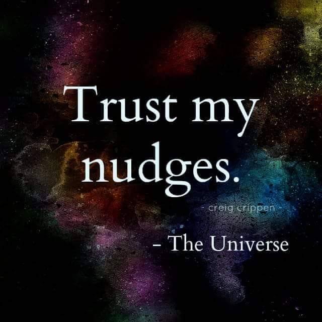 TRUST NUDGES.JPG