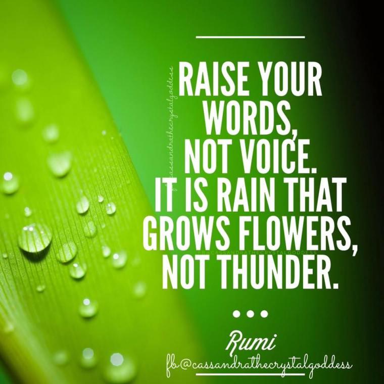 WORDS NOT VOICE.jpg