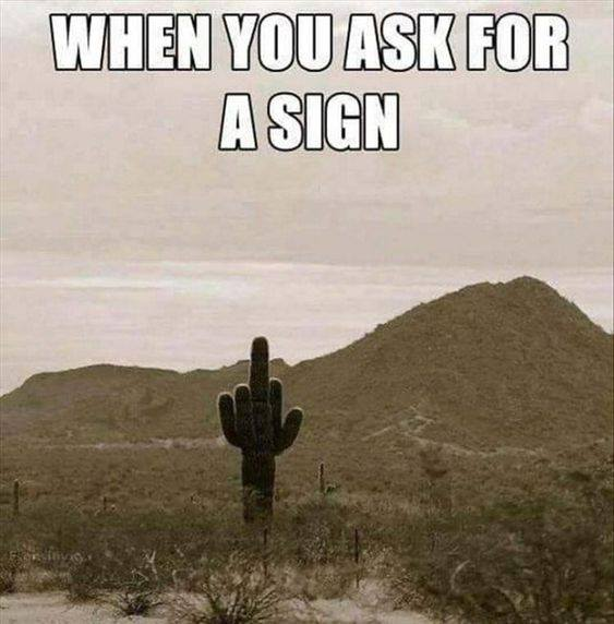 ASK FOR A SIGN.jpg