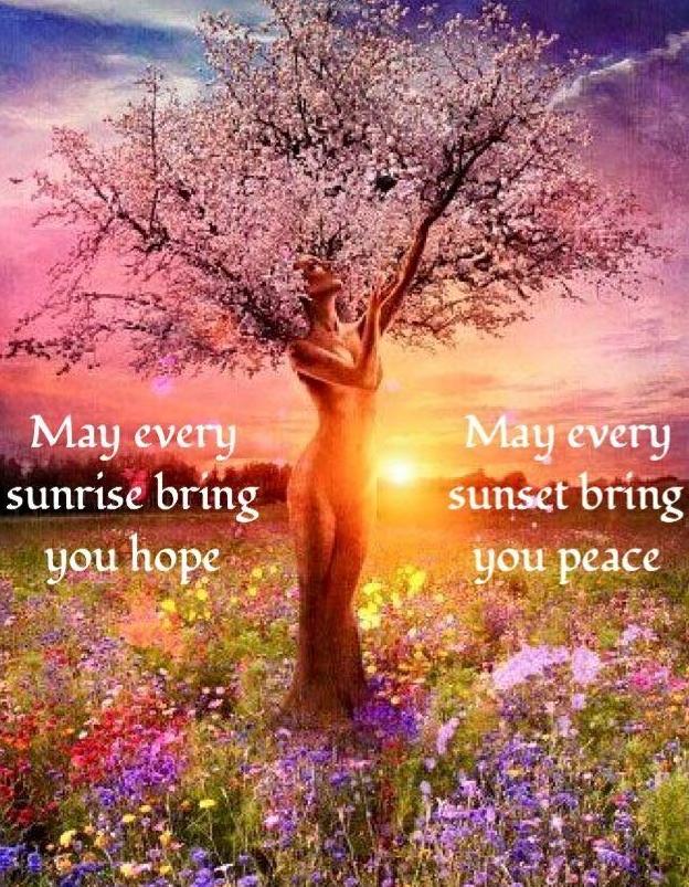 MAY EVERY SUN