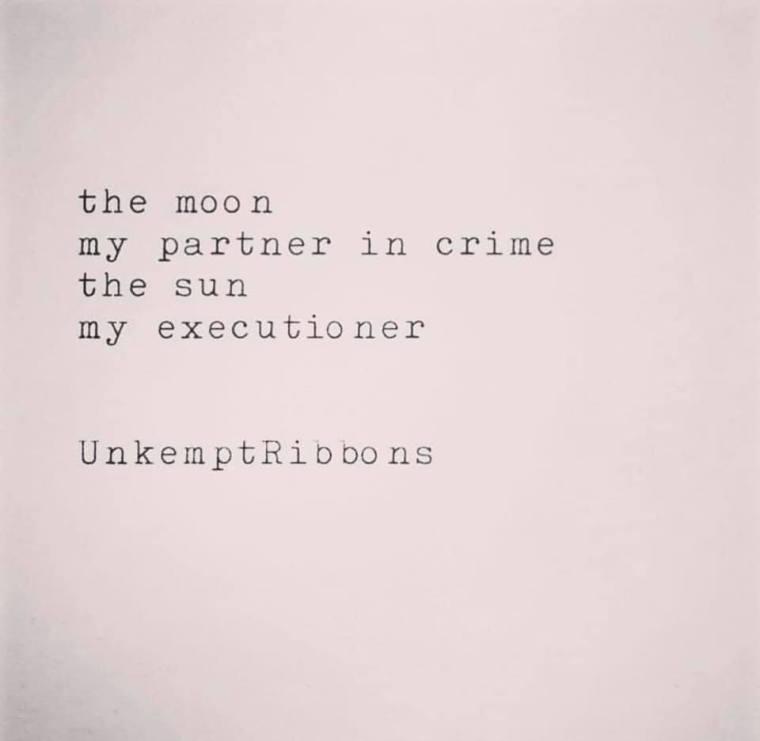 PARTNER IN CRIME.jpg