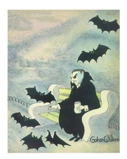 FEEDING THE BATS.JPG
