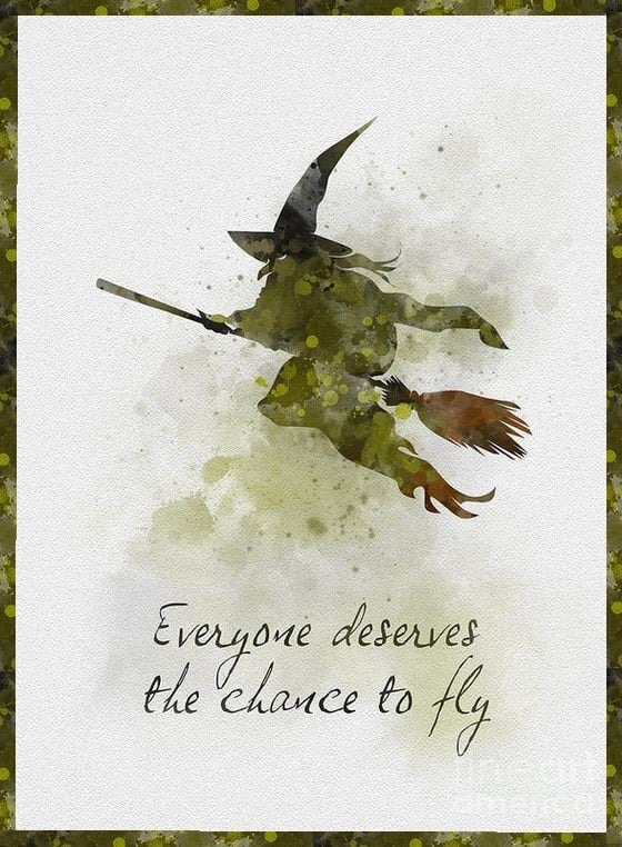 CHANCE TO FLY.JPG