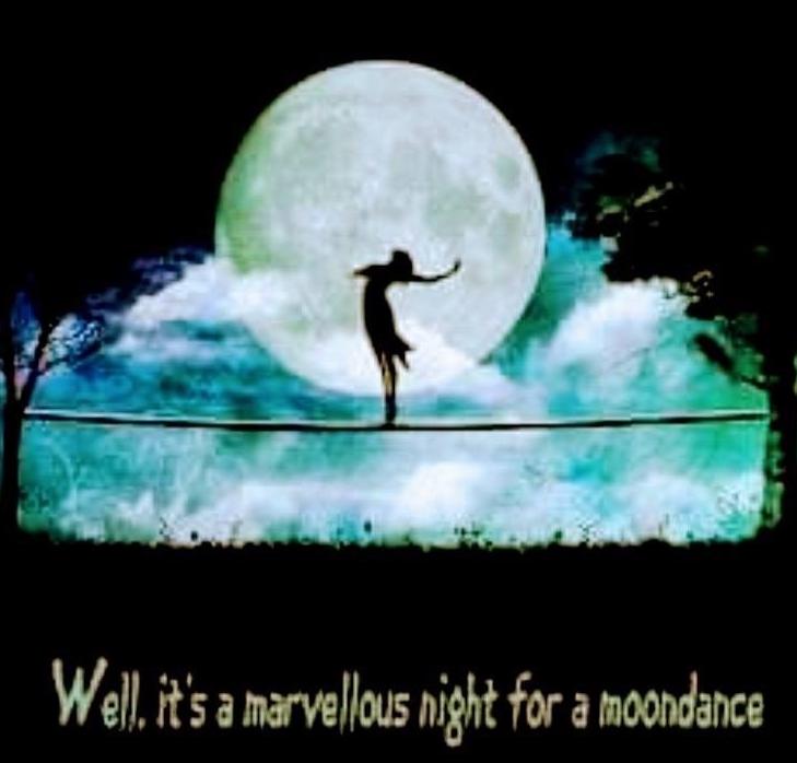MOONDANCE NIGHT