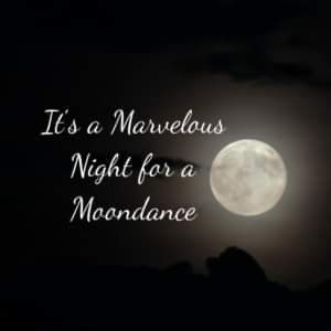 MARVELOUS MOONDANCE.JPG