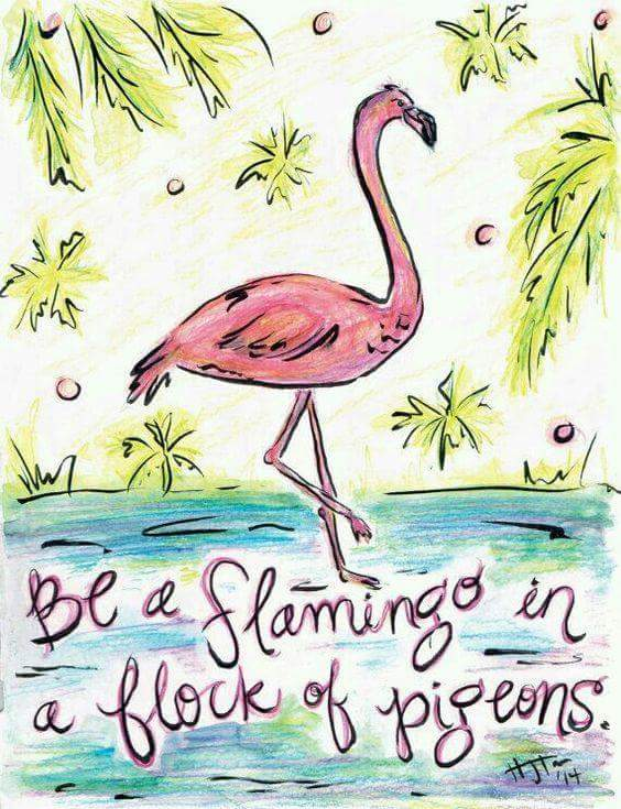 BE FLAMINGO