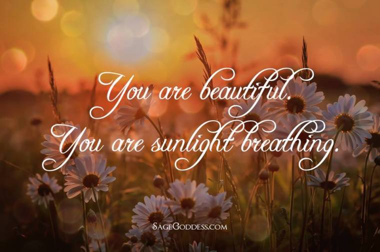 YOU ARE SUNLIGHT